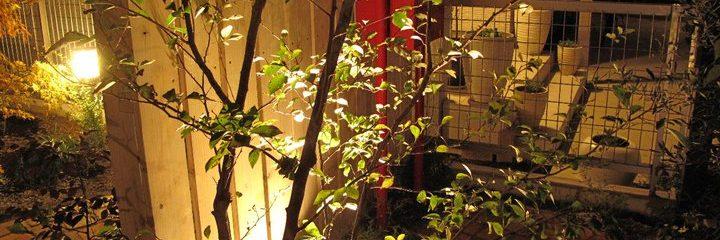 雑木の庭の作り方3