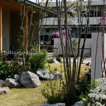 ジューンベリーの庭
