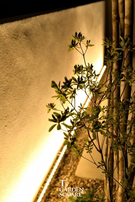 ヒラド 自然樹形