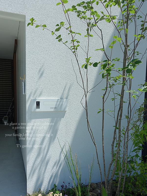 アズキナシ玄関前 シンボルツリー