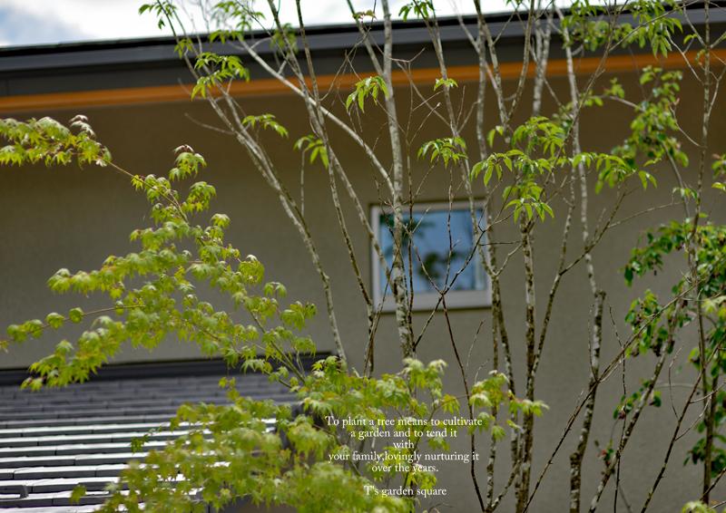 アオダモシンボルツリー