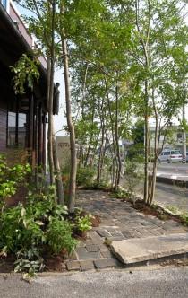 雑木の庭 ニーニャニーニョ