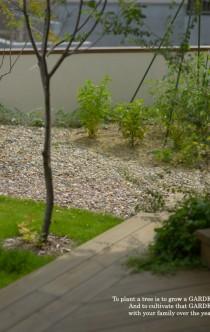 家庭菜園イメージ