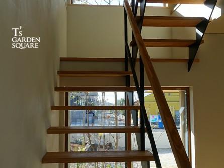 階段坪庭 昼