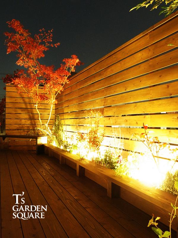 モミジの庭夜景