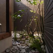 アオキイメージ 風呂坪庭