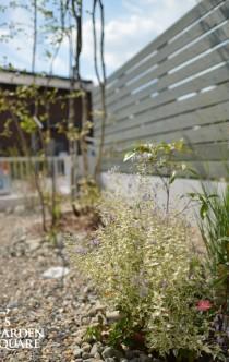 積水ハウス外構植栽イメージ
