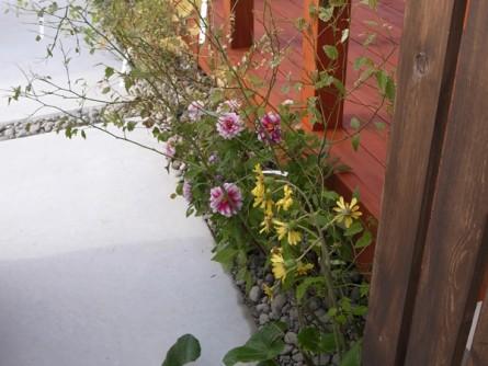 植栽イメージ