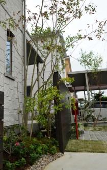 セキスイハイム 植栽