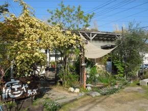 T'sの庭