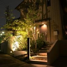 店舗ディスプレイにも最適なライトアップされた庭