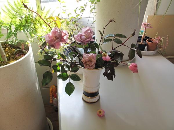 切りつるバラ