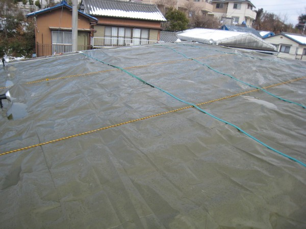 屋上緑化シート