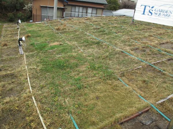 2011・2月末屋根
