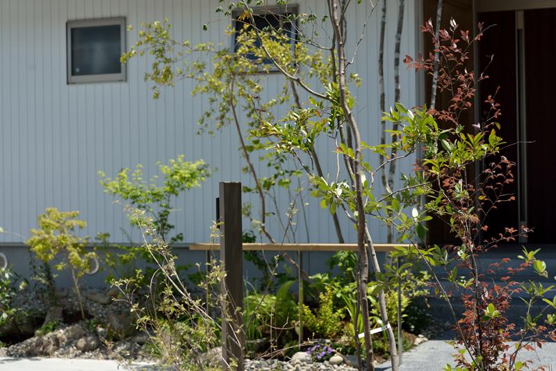 雑木の庭イメージ