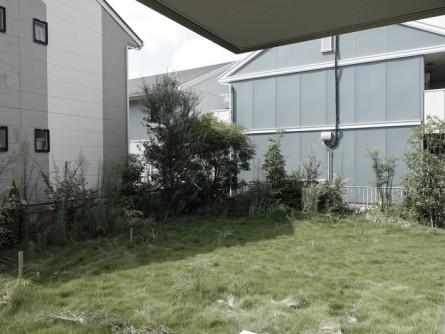 荒れ放題の庭