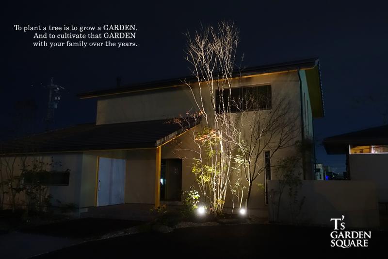 雑木の夜景 三和木