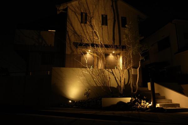 ライトアップ雑木の庭