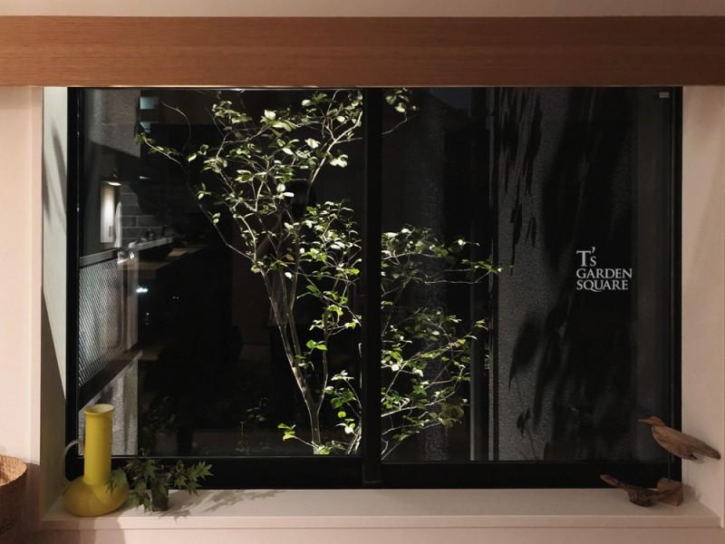 植木 ライトアップ