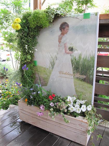 ウエディング専門店の緑で囲んだ看板